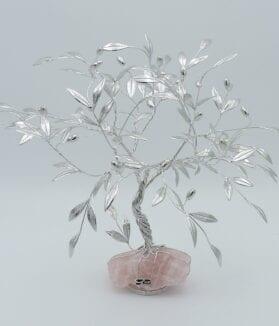 bonsai-di-olivo