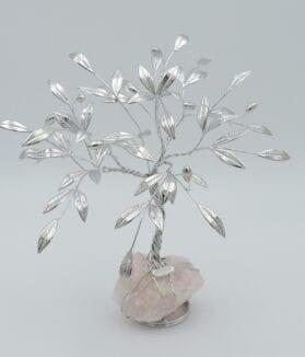 albero-di-olivo